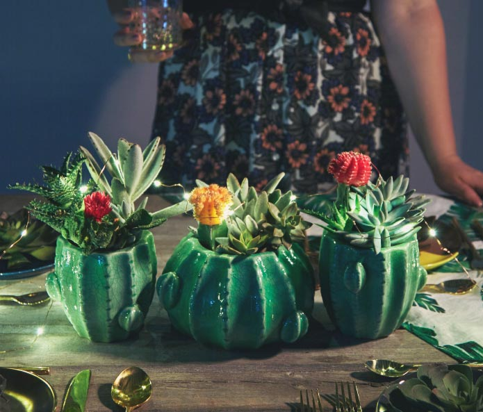 Succulent Table-Setting Tips. Get 'Em on the Blog.